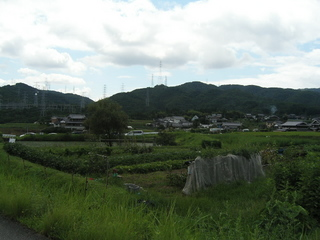 KIF_9454.JPG